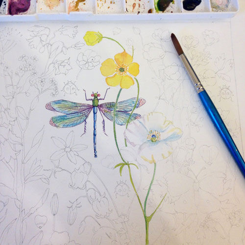 In progress, Buttercups & Wings © Strawberry Snail Illustrations